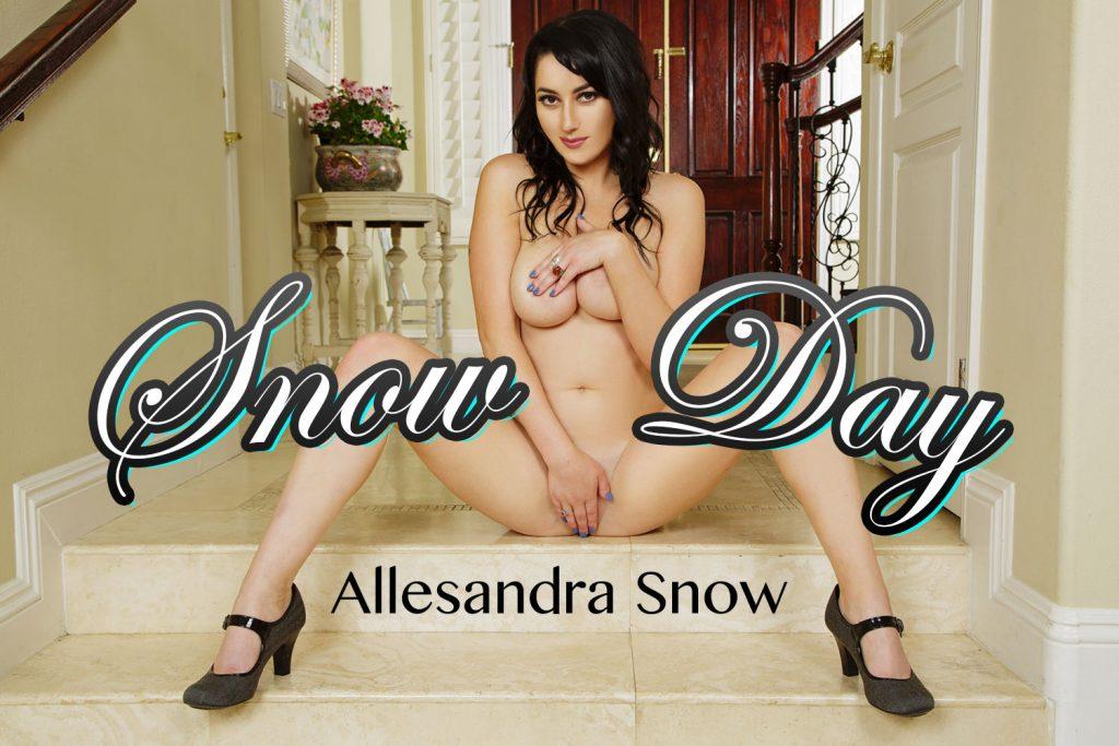 BadoinkVR 4K VR Porn Snow Day
