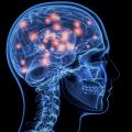 Brain On VR Porn